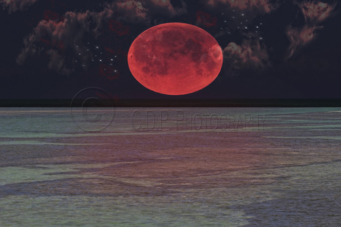 blood moon 2019 key west - photo #2