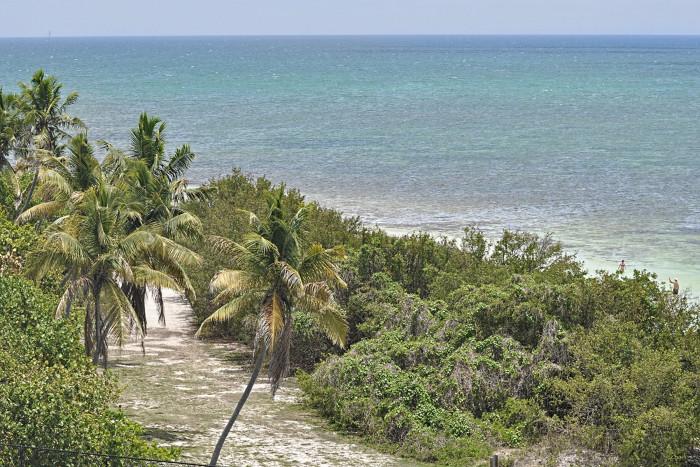 Photo Art in Lobster Trap Box Frames – Higher | Key West / Florida Keys Money Saving Discount ...